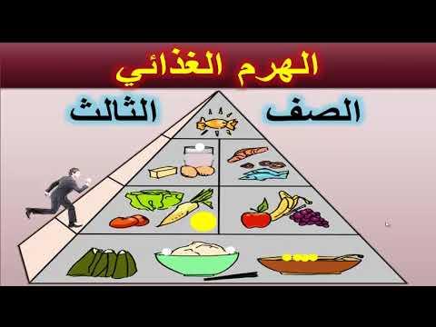 تعرف على شكل الهرم الغذائي 7