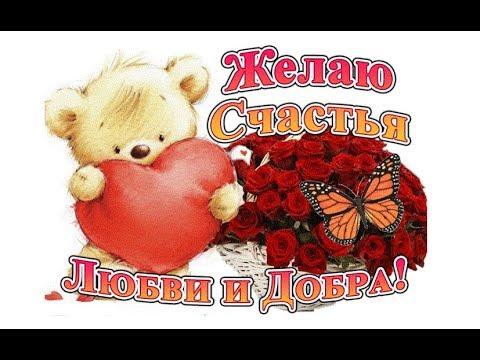 Я желаю счастья родным и друзьям ! Большой любви, добра, тепла ! ...