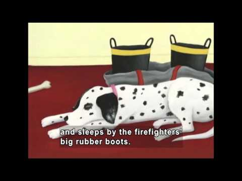 dot-the-fire-dog-(accessible-preview)