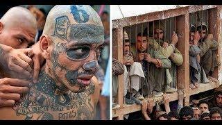 Самые страшные тюрьмы в мире. Не для слабонервных!