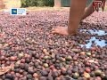 Farmers' associations crucial in development of coffee sector