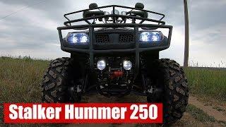 stalker Hummer 250. Обзор квадроцикла, плюсы и минусы модели