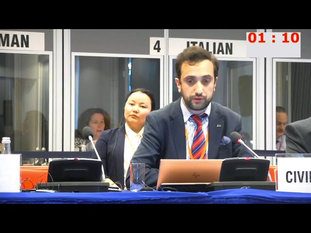 HDIM 2019, Working Session 4 - Daniel Ioannisyan
