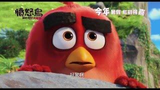 【電影預告】《憤怒鳥大電影》The Angry Birds Movie 最新預告