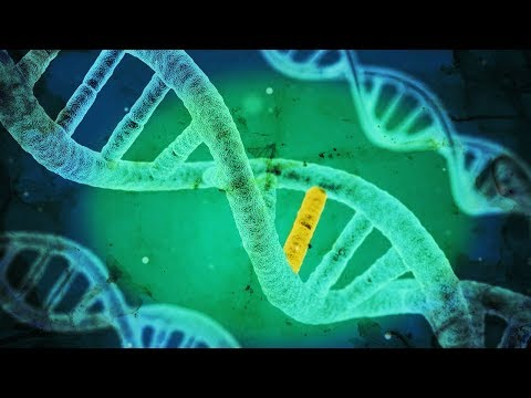 Oopsies: Gene Editing Now Admittedly Causes Hundreds of Mutations