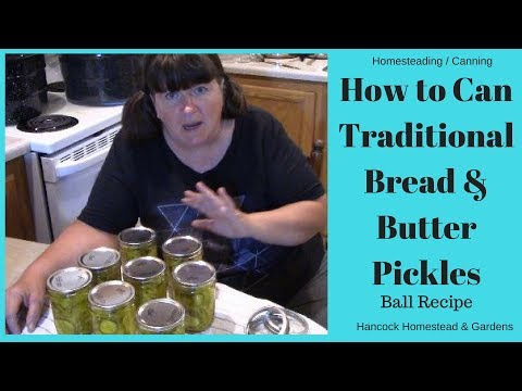 Homesteading Skills For Beginners: Canning Bread & Butter Pickles (Ball Recipe)