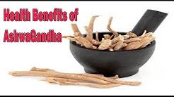 अश्वगंधा के फ़ायदे | Health Benefits of Ashwagandha in Hindi | Ashwagandha ke fayde