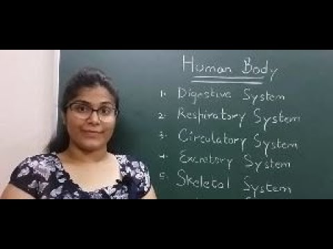 Systems of Human Body Part 1 - In Hindi