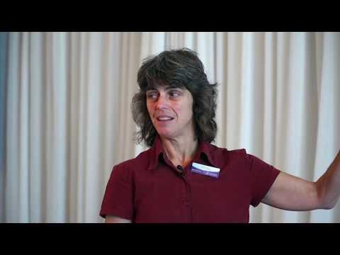 SA and the environment - environmental values and behaviours