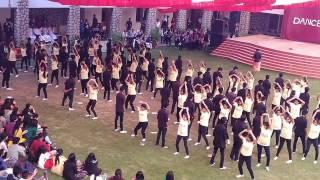 scene contra productions dance extravaganza 2017 christ university