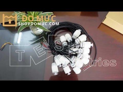 Cảm biến phao từ bằng nhựa loại Mini Finetek FCV21QDA05B