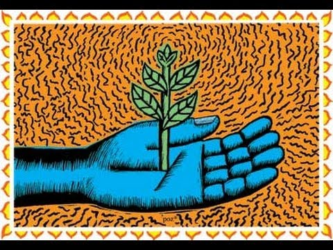 Permaculture and NoTill Gardening
