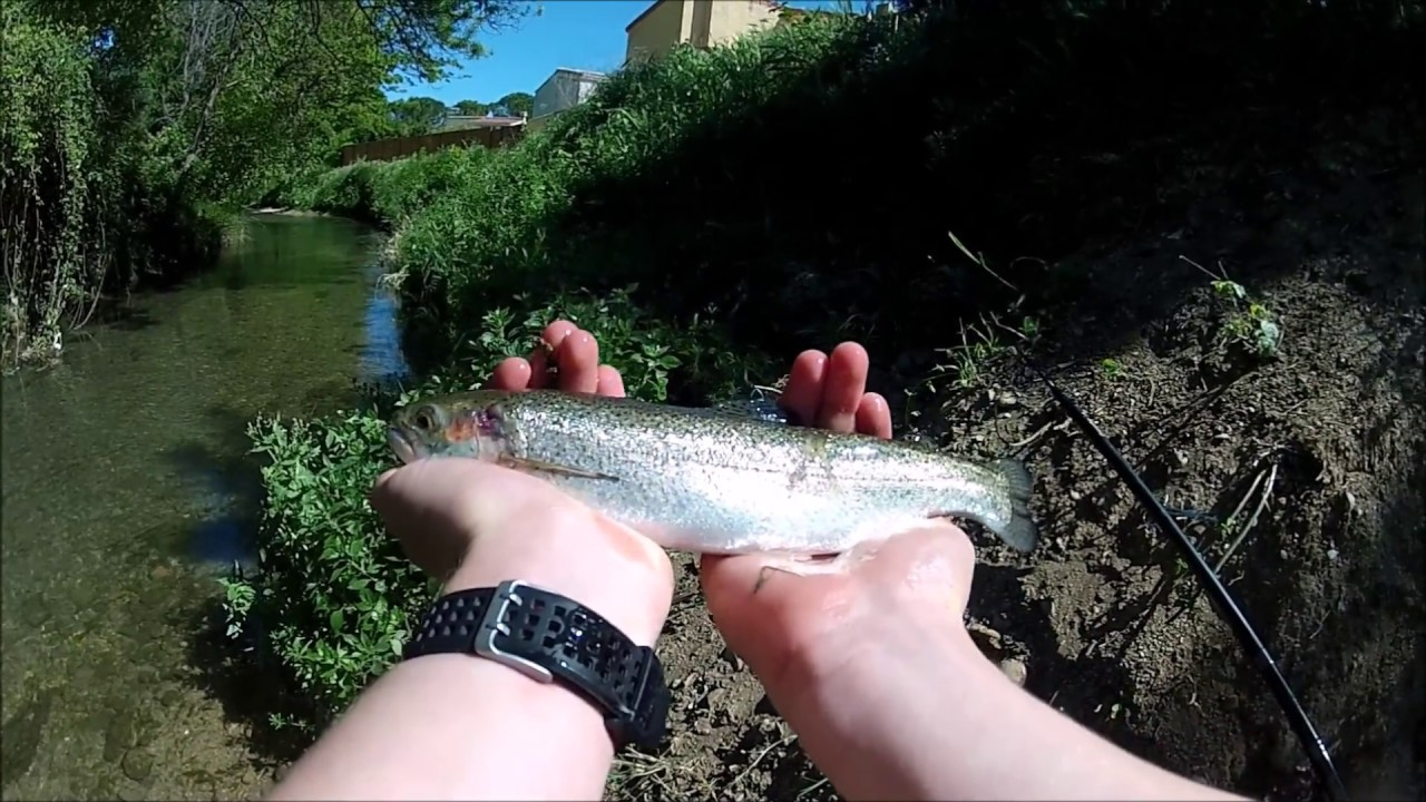 peche truite riviere bouchon