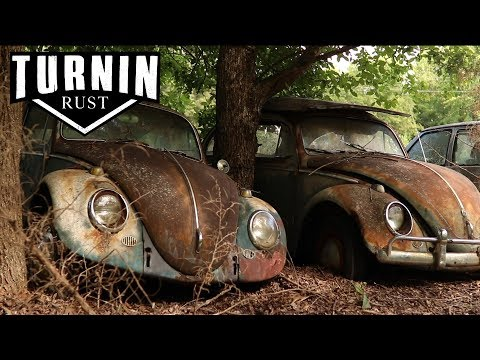 HUGE Abandoned Volkswagen Collection Found after 40 YEARS!! | 1960 VW Beetle | Turnin Rust