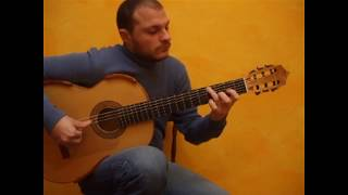 FRATELLO SOLE SORELLA LUNA Guitar Version by Flavio Sala