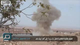 مصر العربية | هجوم مشترك للنظام و