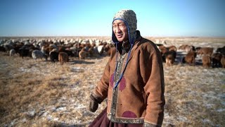Climate change forces Mongolia's herders to move to the city