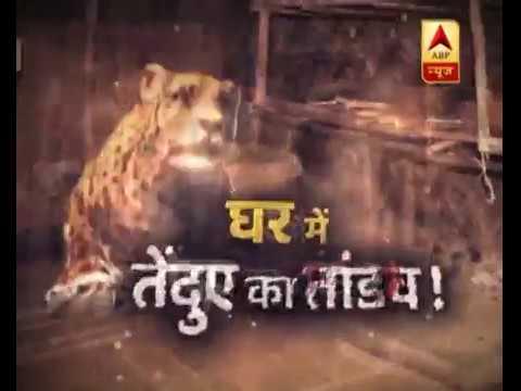 Sansani: Villagers Horrified By Leopard | ABP News