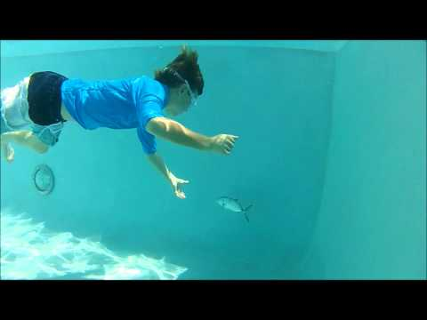 Thumbnail: Kids Hand Catching Fish in Pool