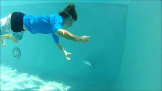 Kids Hand Catching Fish in Pool