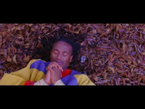 Jah Prayzah - Hokoyo (Official Music Video)