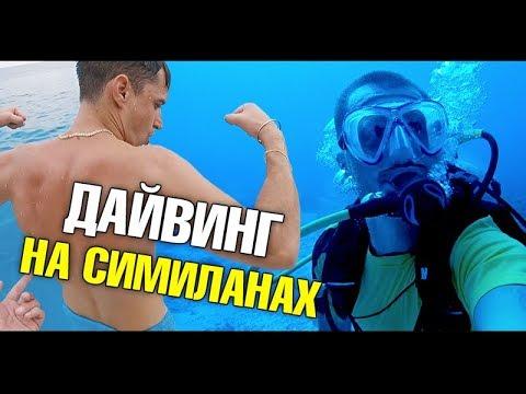 Самый лучший дайвинг на Симиланских островах. Что на дне? Подводный мир ft. Александр Кондрашов