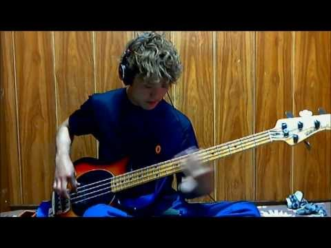 Love Rollercoaster - red hot chili peppers [BASS COVER]