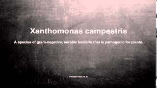 Medical vocabulary: What does Xanthomonas campestris mean