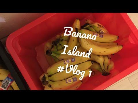 Banana Island 🌴 🍌 Einkauf| Vorbereitung | BODY-UPDATE 😱