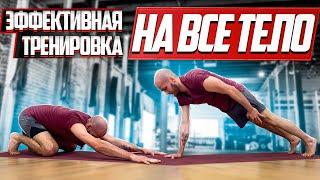 Жиросжигающая тренировка Тренировка на все тело Легко и эффективно Круговая тренировка