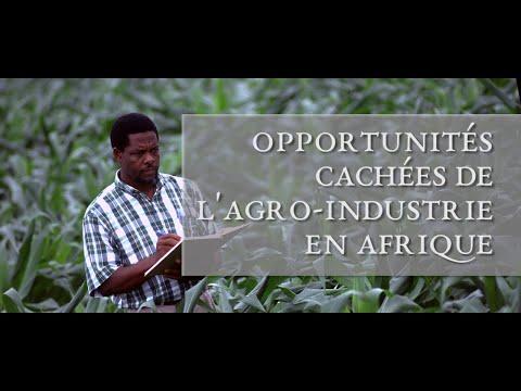 Opportunités cachées à