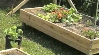 Building Grow Boxes | Raised Beds