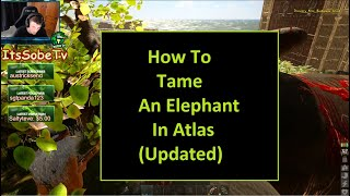 How To Tame An Elephant In Atlas (Update April 24th 2019)