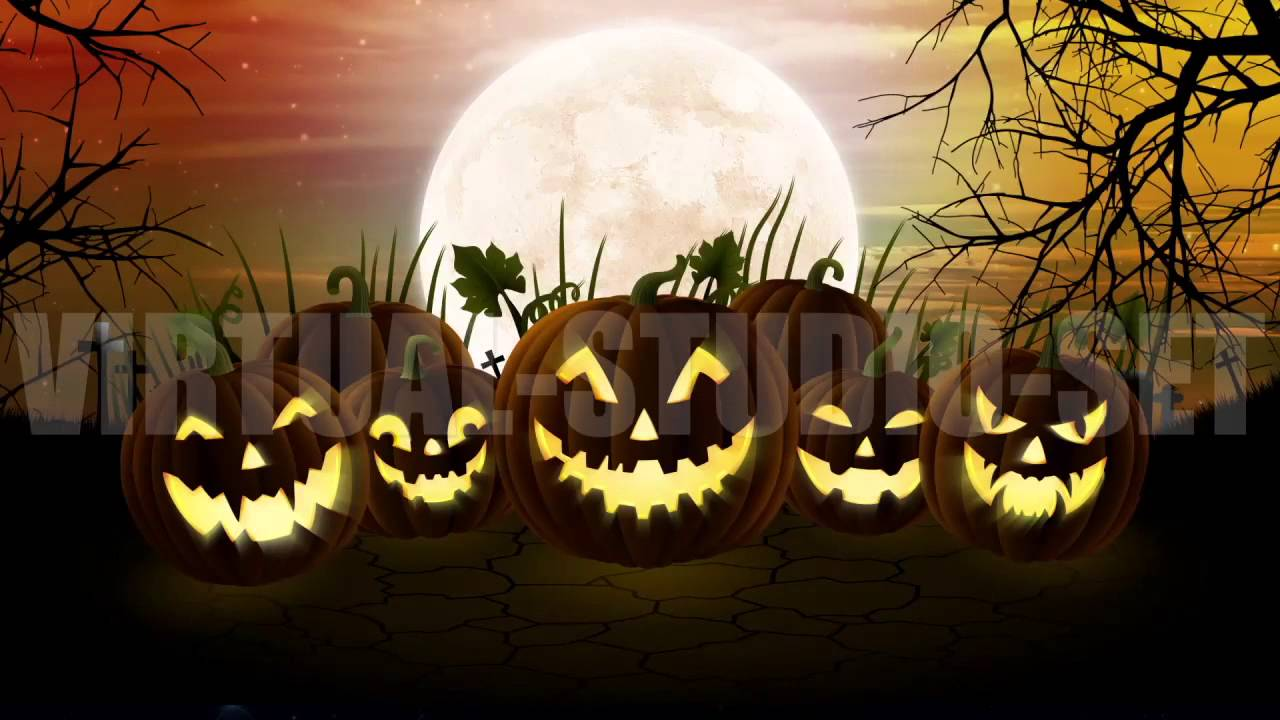 Pumpkin Patch Background Animation - YouTube