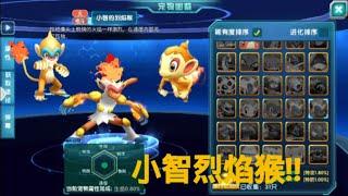 pokemonl口袋樂園|口袋妖怪3DS[陸版]更新-小智烈焰猴三種進化