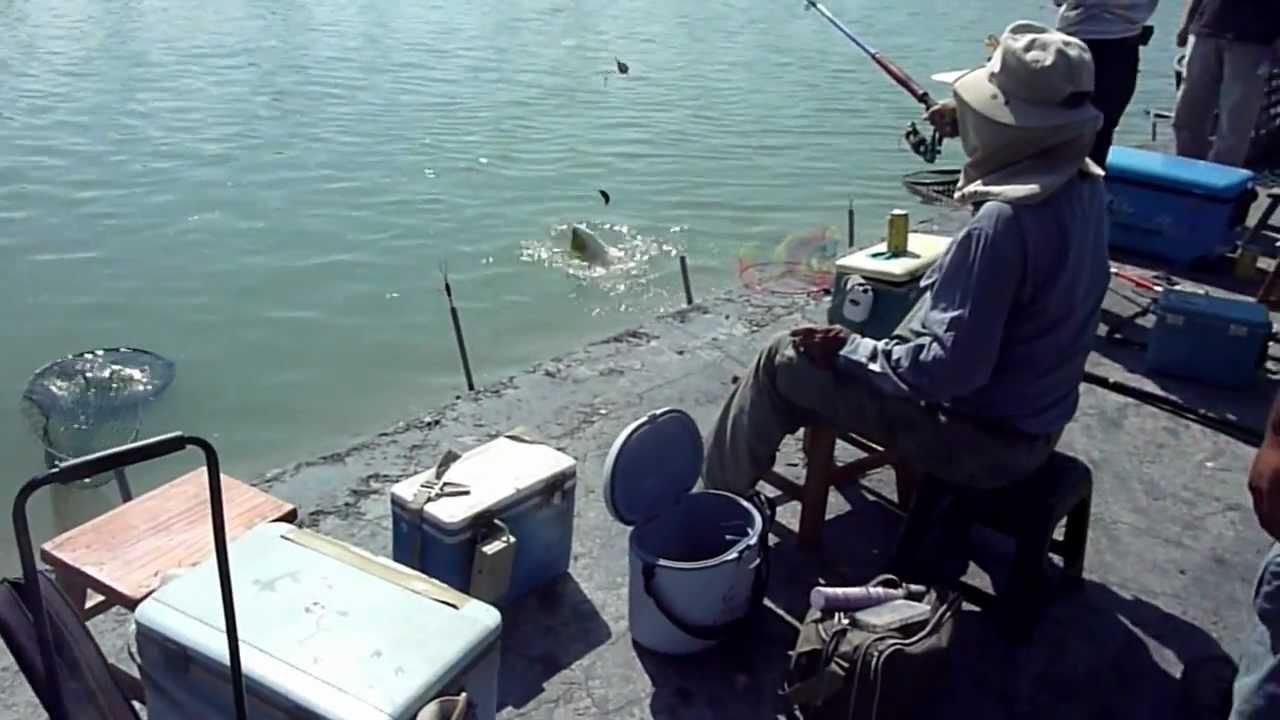大鵬灣釣魚烤肉休閒農場 - YouTube