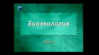 Экология. Урок 8. Биоценозы. Отношения в биоценозах