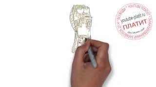 ГУБКА БОБ  Как легко нарисовать спанч боба(ГУБКА БОБ. Как правильно нарисовать спанч боба или губку боба поэтапно. На самом деле легко и просто http://youtu.b..., 2014-09-12T17:38:18.000Z)