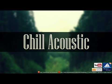 Chill Acoustic (Royalty - Free Music)