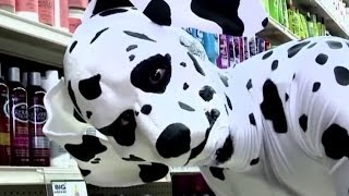 Dalmatian | The Eric Andre Show | Adult Swim