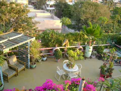 Picture Of Rooftop Garden Designed By Muslim Raza Youtube
