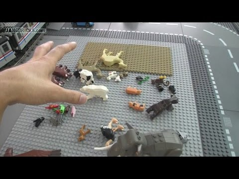 The MOC process: Zoo brainstorming (step 1)