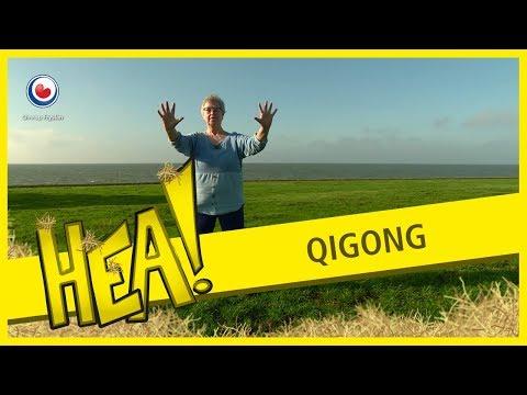 HEA! Qigong les in Warns