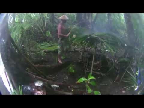 Film decouverte -Survie et surf sur une ile déserte- Des iles Usions