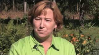 Growing Herbs : How to Grow Chamomile