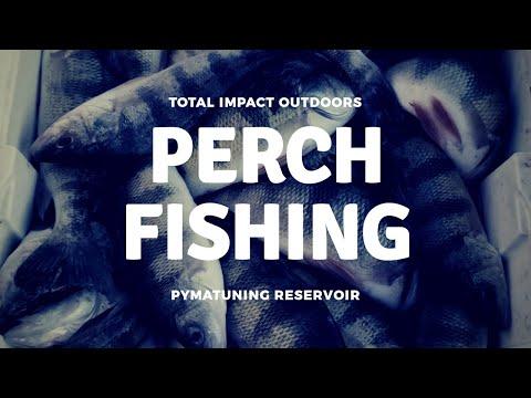 Pymatuning Perch Fishing