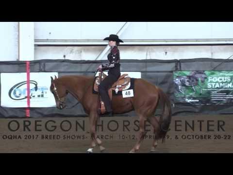 Oregon Quarter Horse Association Shows at Oregon Horse Center