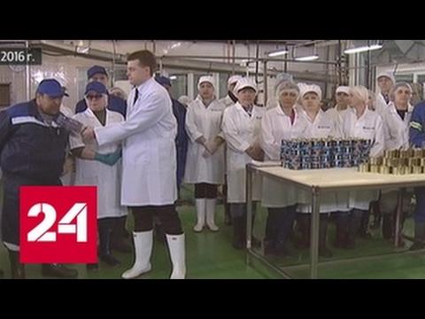 Экс-главу рыбокомбината на Сахалине осудили за невыплату зарплат