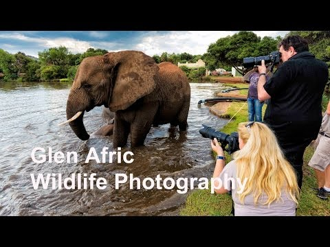 Africa Wildlife Photography Workshop And Tuition