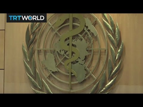 Insight: World Health Organization